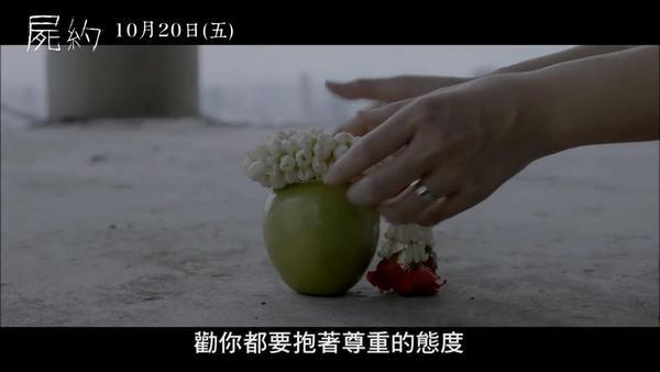 天下HD尸兵图鉴_尸兵技能属性一览