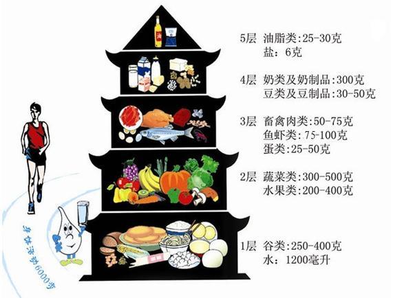 肥胖吃什么好 6种中医食疗方攻克肥胖症