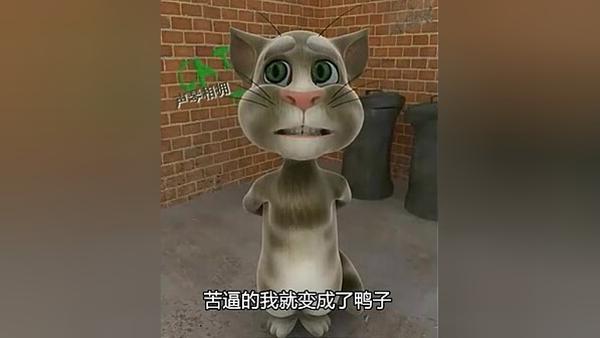 湯姆貓咆哮版之苦逼快遞哥你傷不起視頻