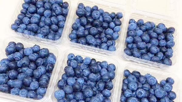 速冻蓝莓怎么吃,速冻蓝莓一次可以吃几颗