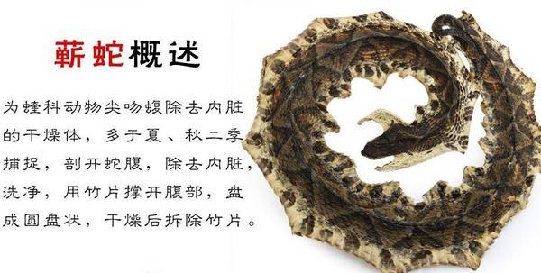 白花蛇丸的功效与作用