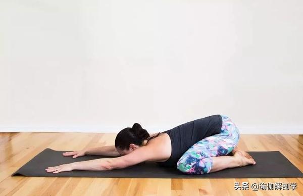 适合初学者学习的入门瑜伽