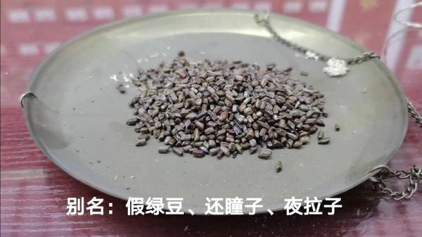 决明子茶的功效与作用,决明子茶的禁忌