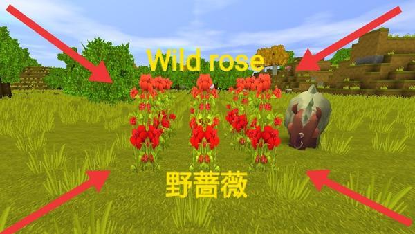 迷你世界野蔷薇种子怎么制作 野蔷薇种子作用