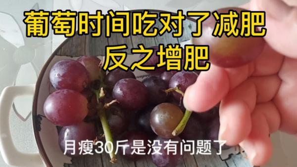 减肥期间可以吃葡萄吗,减肥怎么吃葡萄效果最好