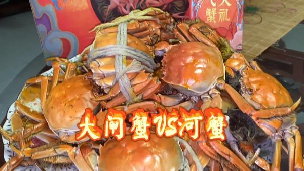 大闸蟹是河蟹吗,河蟹和大闸蟹的区别