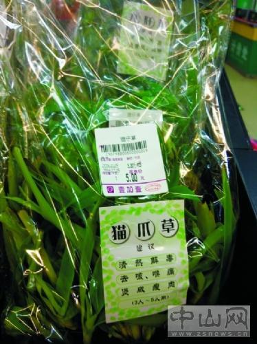 白花蟛蜞菜等同白花蛇舌草吗?