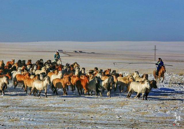 蒙古草原图片大全大图