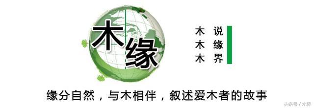黄杨木雕 - 中文百科