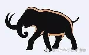 """猛犸象复活计划已达到克隆猛犸象的""""初期阶段"""""""