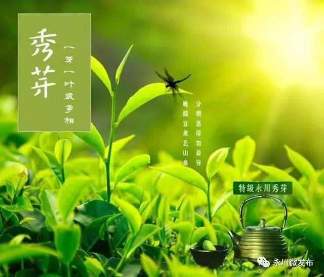 重庆永川区神女湖,高清风景摄影大图片 第8张