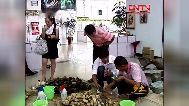 缅甸翡翠赌石——这块3万的翡翠原石,一刀切出大片... -bilibili