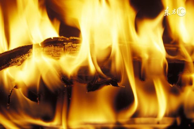 火中取栗什么意思啊,火中取栗怎么读音