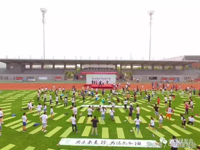 """""""为未来支撑 为绿色加油""""公益活动在南京启动"""