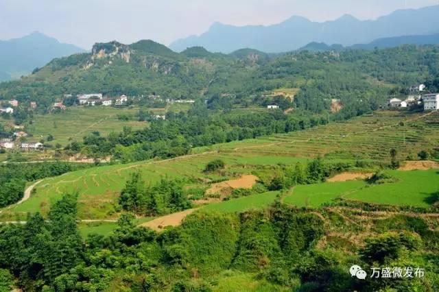 """乡村旅游好去处,万盛石林""""鱼米飘香""""风景独美哦~"""