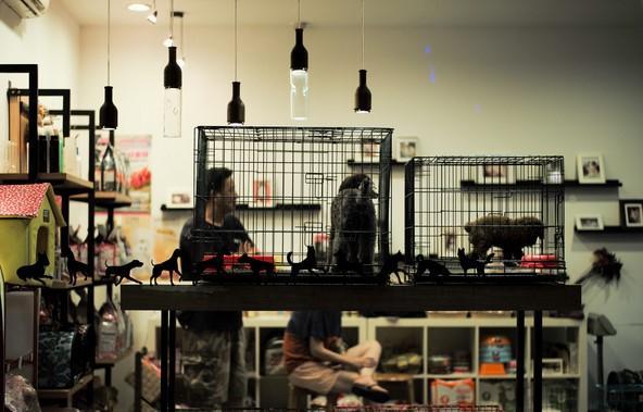 最新整理的15个适合女性开店创业的好项目推荐