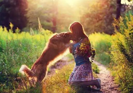 女孩和狗合影图片 15张 (天堂图片网)