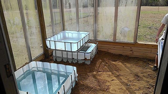 简易,便宜,实用,鱼菜共生温室,没有比这个更小的了