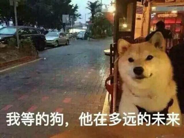 """中国""""单身狗""""最多的5大城市,重庆首当其冲!"""