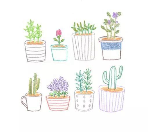 简约实用的小清新植物简笔画