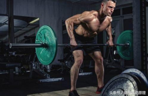 多款跑步类型哪个适合你 找准锻炼方式增进健康-体... -手机搜狐