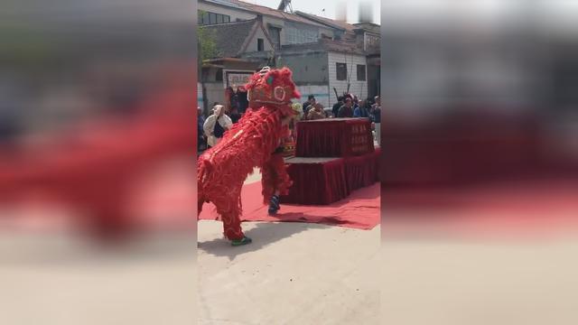 河北省武安市舞狮表演,威风又帅气的狮队!