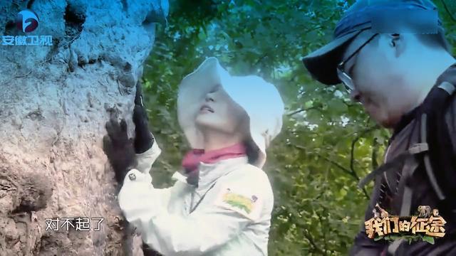 炉石传说砰砰博士冒险清场树木学家德克斯特