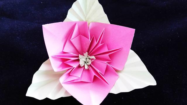 折纸花 折纸大全图解 创意diy纸艺 简单又漂亮的立体纸花
