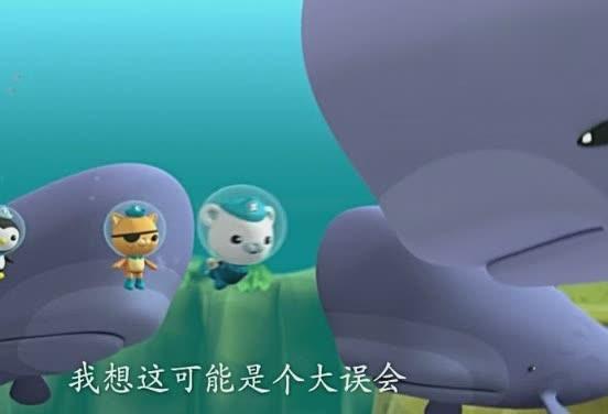 小抹香鲸搁浅亡 母鲸岸边徘徊不忍离去_星知奇闻趣... _搜狐视频