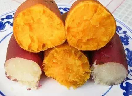 蒸红薯图片