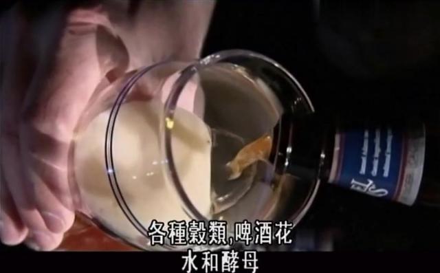 啤酒的酿造方法