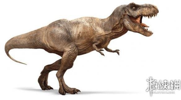 恐龙的种类名称和图片15