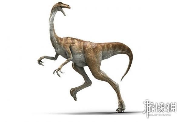 恐龙的种类名称和图片19