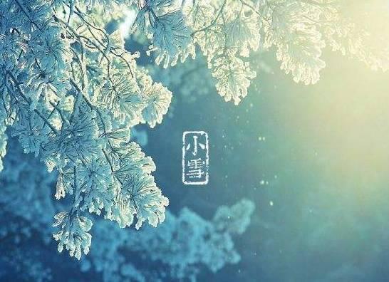 天降雪,寒将至,小雪节气你注意保暖了吗