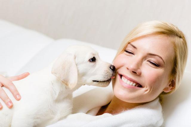 狗狗把人类当做他们最亲近的人,这几张图可以证明