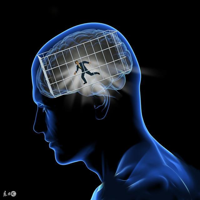 神经解剖|大脑半球的外形-《临床神经解剖学(第2版)》连载之一