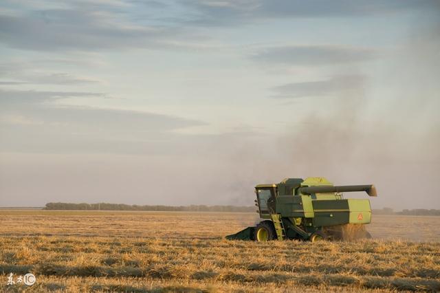 什么是农业产业化?国家为何大力推行产业化农业?