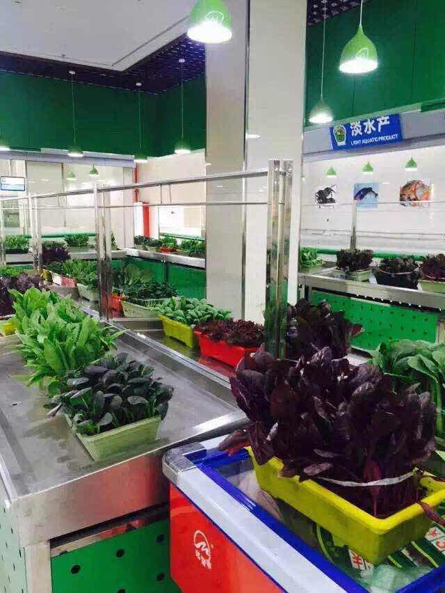 关于盆栽蔬菜,你了解多少?