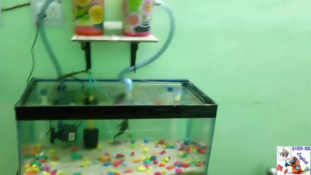 鱼缸下过滤器安装图