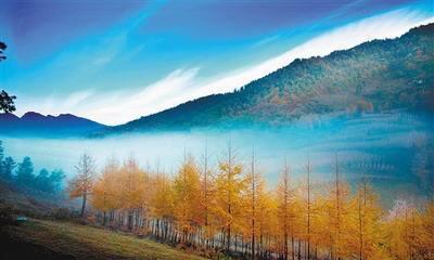乡村旅游之开州国家森林公园雪宝山