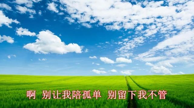 在一起喜欢听的歌《南飞雁》超级好听的中文歌!