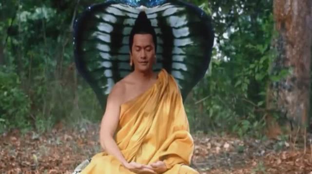 释迦牟尼菩提树下成如来佛主,巨蟒前来护法