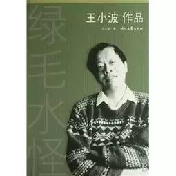 王小波《绿毛水怪》改编电影,李银河任文学顾问