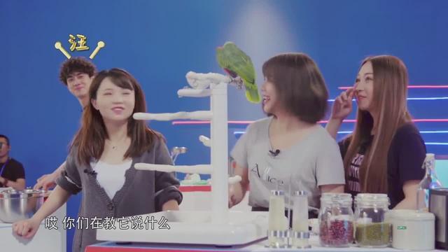 林海峰为什么叫林狗