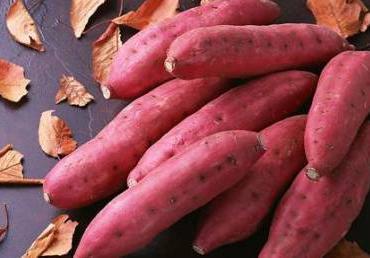 ...红薯的主产地批发价格区间并红薯预测行情走势图_一亩田农业网