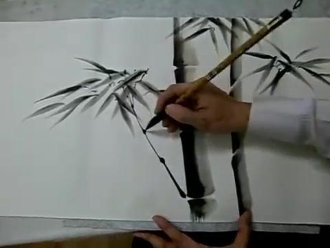 画竹子视频