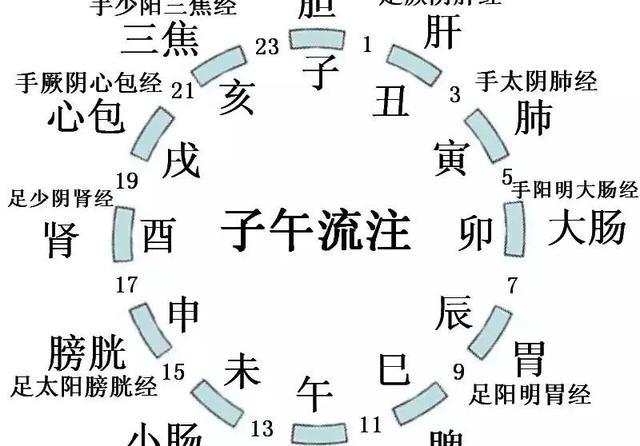 十二经络时辰运行图