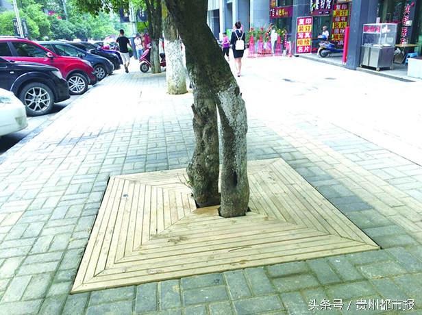 diy防腐木