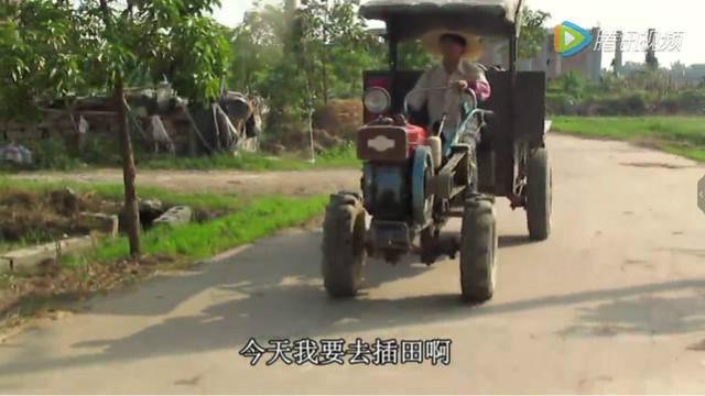 广东仔拖拉机结婚,伴娘笑了!_手机搜狐网