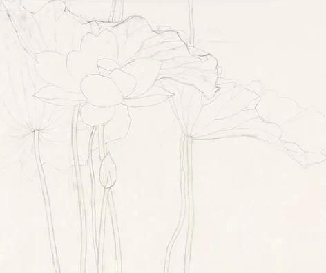 工笔画底稿和原图